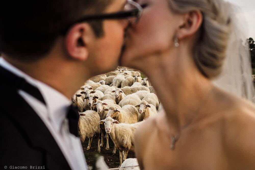 Bacio sposi con sfondo bucolico Matrimonio ad Alghero