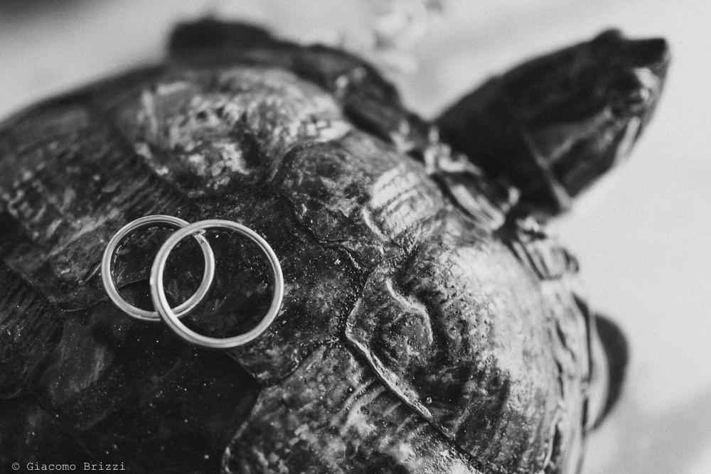 Dettaglio sulle fedi nuziali, fotografo matrimonio rapallo, liguria
