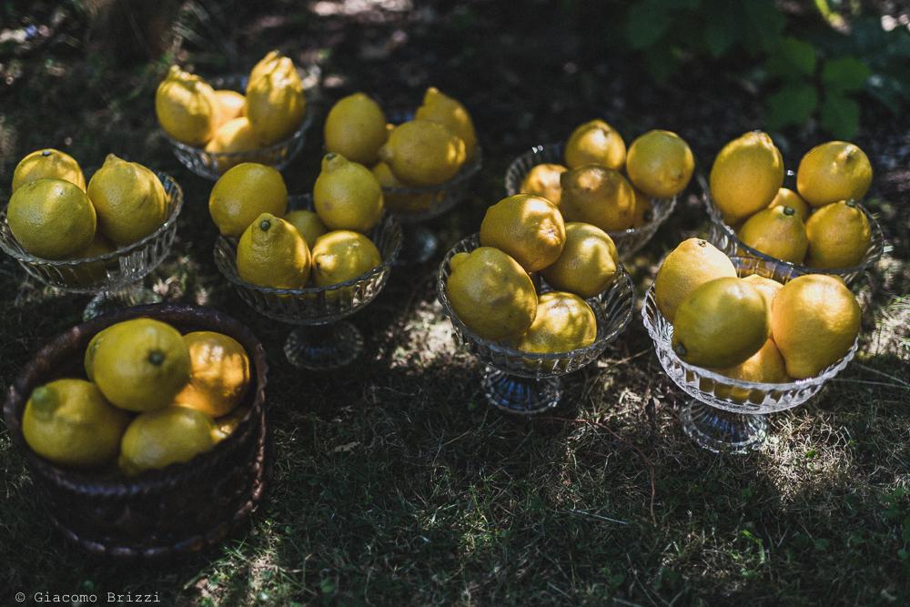Foto limoni locali, fotografo matrimonio ricevimento la ginestra, finale ligure