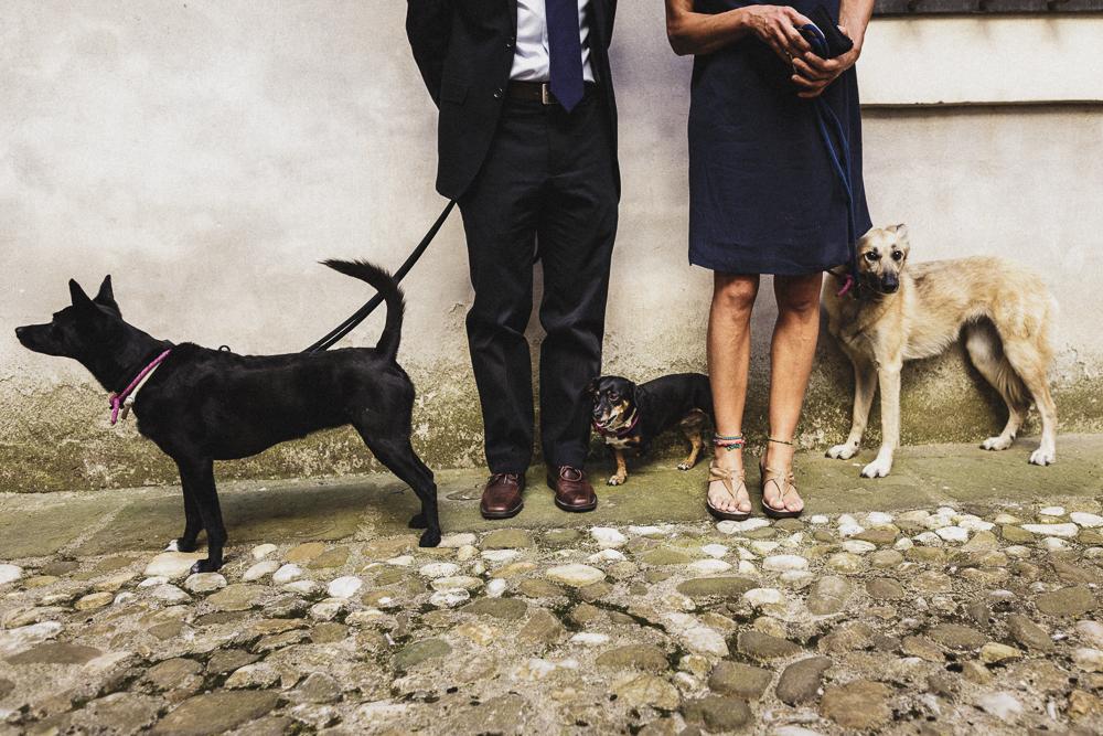 Ci sono anche gli amici a 4 zampe tra gli invitati matrimonio ricevimento terre di nano