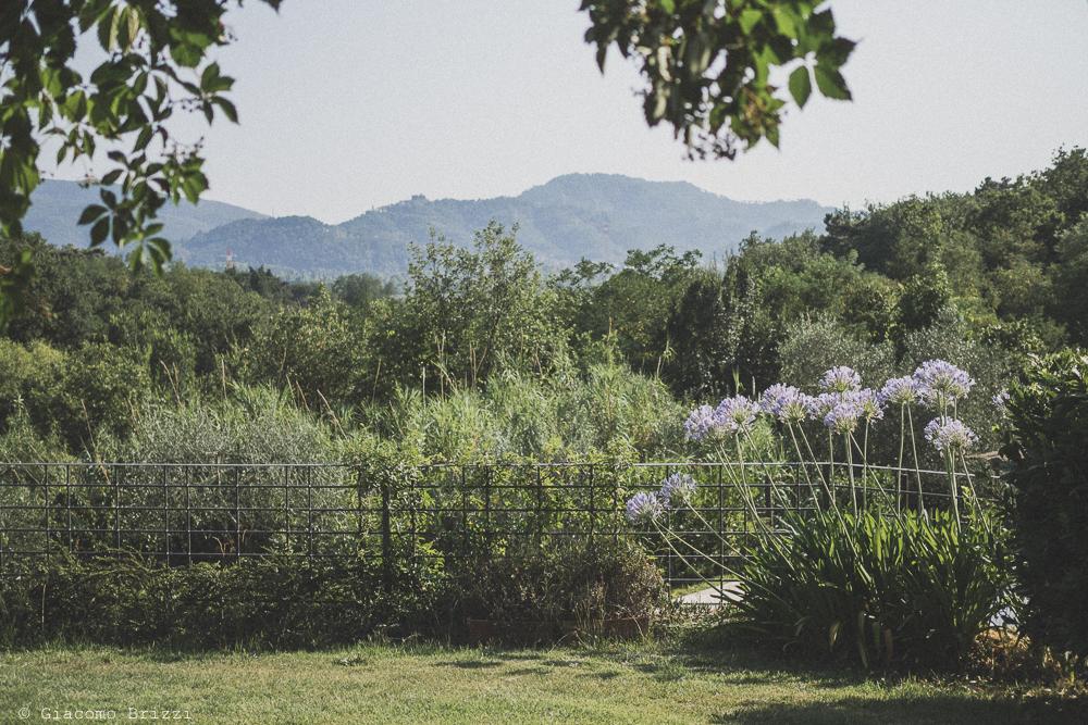 Uno scorcio del panorama, fotografo al matrimonio di sarzana